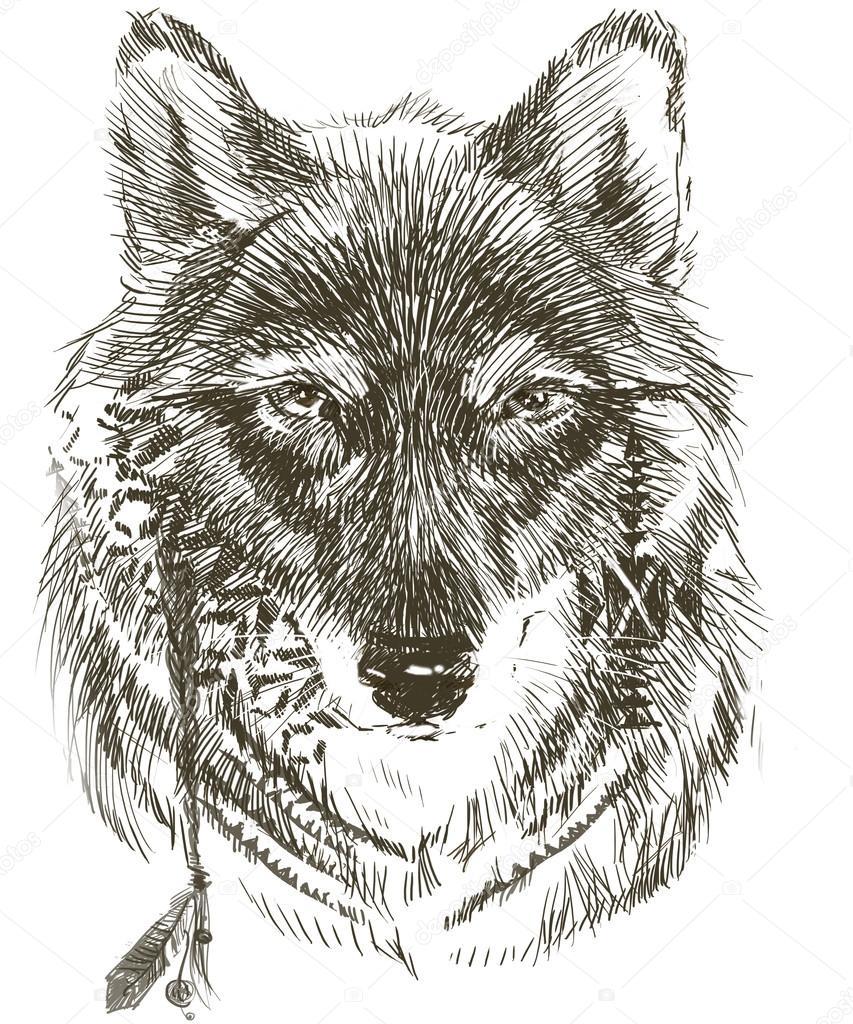 Wilk Wilk Jest Indiański Wojownik Szkic Wilk Wilk
