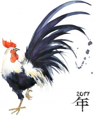 Rooster. Rooster Year. 2017 Chinese New Year of the Rooster. Watercolor Illustration. Rooster Chinese Painting. New Year card.