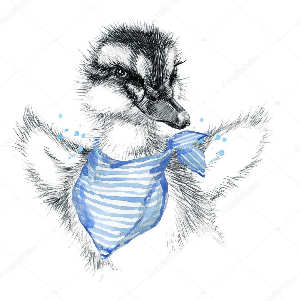 Cute duckling duckling pencil sketch illustration t shirt print with cute duckling poster for kid greeting card