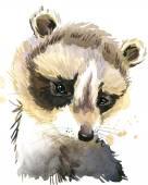 Mosómedve aranyos. Mosómedve. akvarell állat. Vadon élő állat. Erdei állat. Póló művészeti.