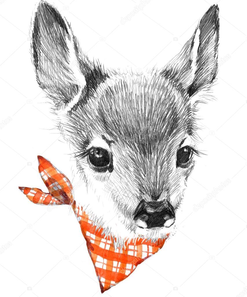 Cute deer pencil sketch of fawn animal illustration t shirt design