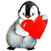 Photo Valentine day. background for a card with a cute penguin and red heart