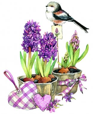 Spring flowers and bird. watercolor