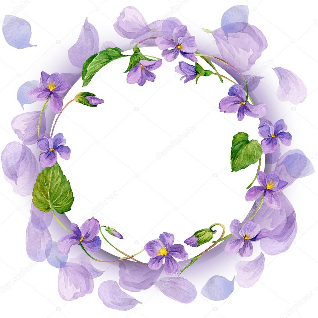 Spring flowers background. Forest violet and young green grass.