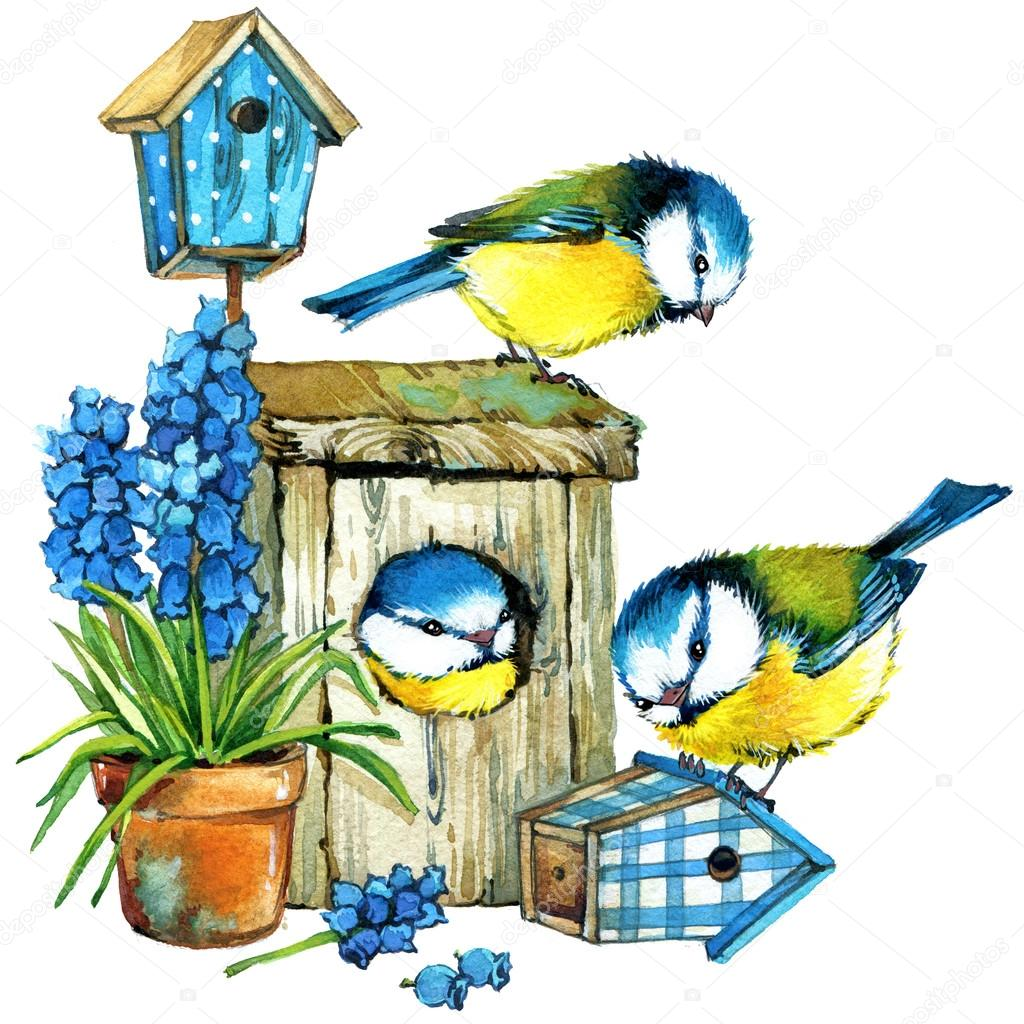 Fleurs de printemps et les oiseaux aquarelle photo for Oiseaux de jardin au printemps