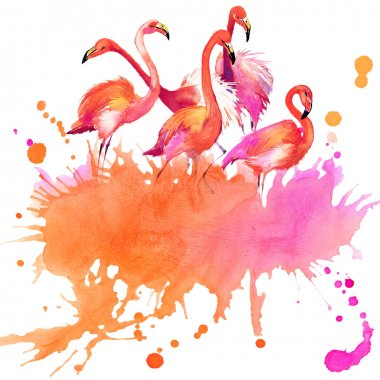 Watercolor  flamingo bird and watercolor abstract background