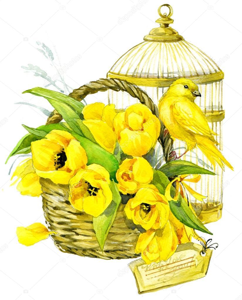 Tulip Flowers Canary Bird And Decorative Birdcage Watercolor