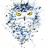 Photo T-shirt graphics cute snowy owl, illustration watercolor