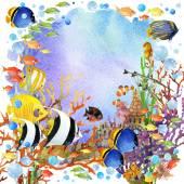 Fotografie podvodní svět. Coral reef ryby akvarel ilustrace