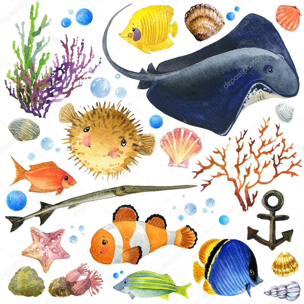 exotic Fish, coral reef, algae, unusual sea fauna, sea shells, anemones and decoration marine theme. underwater world set. watercolor illustration for children