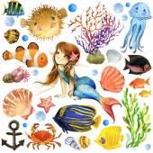 Fotografia onderwater wereld. coral reef vis aquarel illustratiePesci esotici, barriera corallina, alghe, fauna marina insolita, conchiglie, anemoni e tema marino decorazione. insieme del mondo subacqueo. illustrazione dellacquerello per bambini