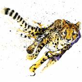 Fotografia cheetah T-shirt graphics,  African animals cheetah illustration with splash watercolor textured background. unusual illustration watercolor  cheetah fashion print, poster for textiles, fashion design