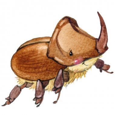 Cartoon insect rhinoceros beetle watercolor illustration. isolated on white background.