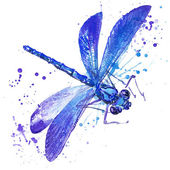 dragonfly  illustration with splash watercolor textured background. unusual illustration watercolor dragonfly  fashion print, poster for textiles, fashion design