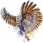 Fényképek bagoly póló grafika, akvarell splash Hóbagoly illusztráció texturált háttér. illusztráció akvarell Hóbagoly divat nyomtatás, plakát a textíliák, divattervezés