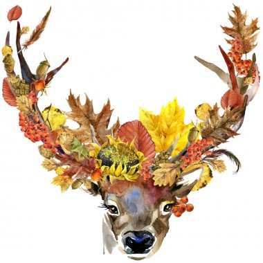 Forest animal roe deer Autumn nature colorful leaves background , fruit, berries, mushrooms, yellow leaves, rose hips on black background. watercolor illustration
