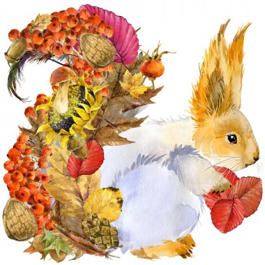 Forest animal squirrel, Autumn nature colorful leaves background , fruit, berries, mushrooms, yellow leaves, rose hips on black background. watercolor illustration