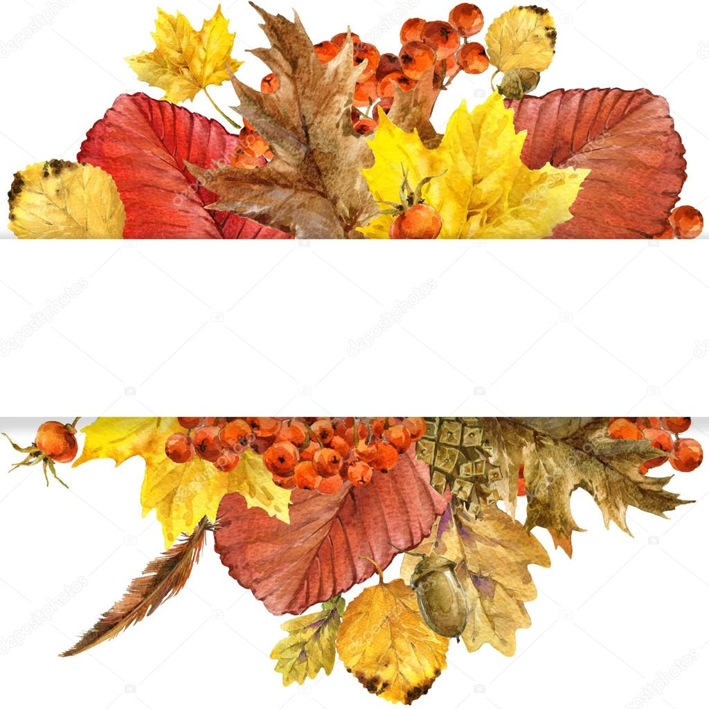 Autumn nature background with colorful leaves,  berries, mushrooms, yellow leaves, rose hips on white background. watercolor illustration with place for your text.