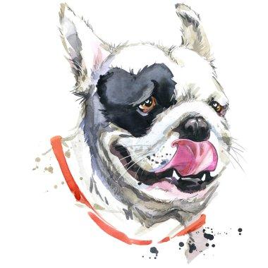 Kiss French Bulldog T-shirt graphics. dog illustration with splash watercolor textured  background. unusual illustration watercolor dog for fashion print, poster, textiles, fashion design