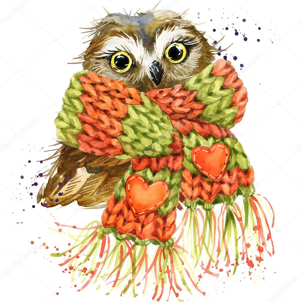 Cute owl T-shirt graphics, snowy owl illustration with splash wa