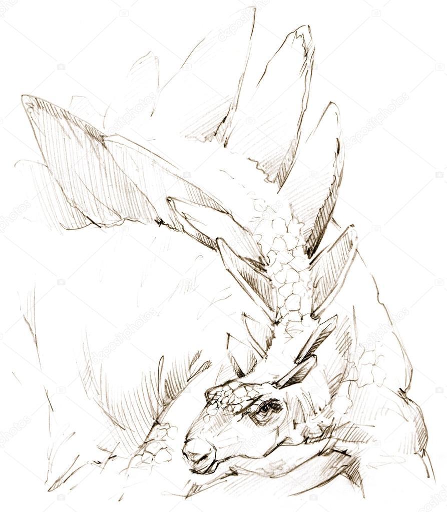Dinosaurus Kresleni Tuzkou Dinosaurus Stock Fotografie