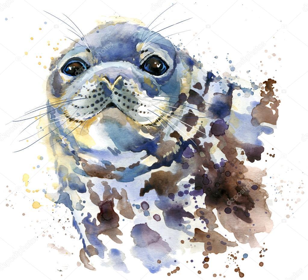 Seal T-shirt graphics, marine seal illustration with splash
