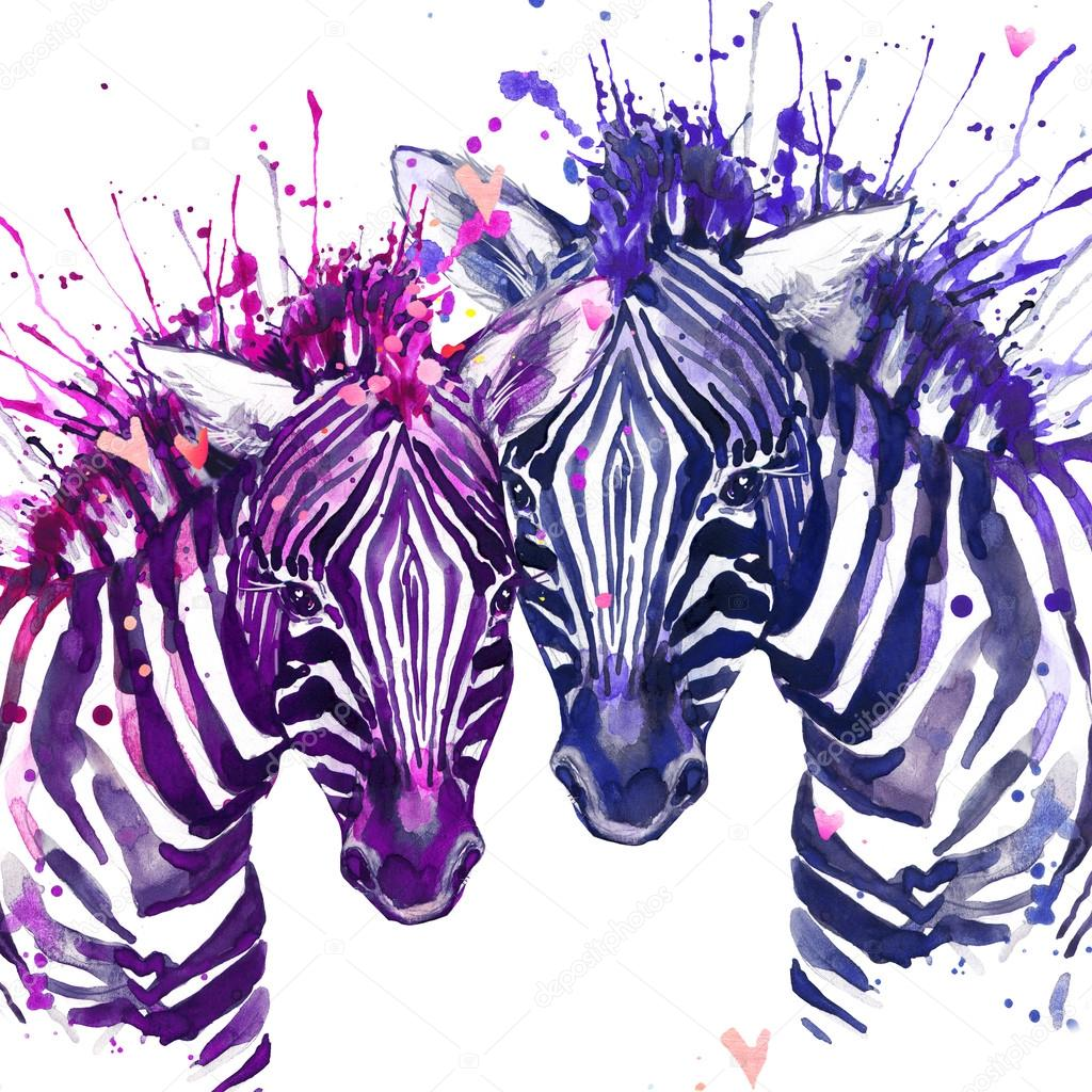 Watercolor zebra illustration. Cute zebra. love card.  Valentine heart. Valentine poster