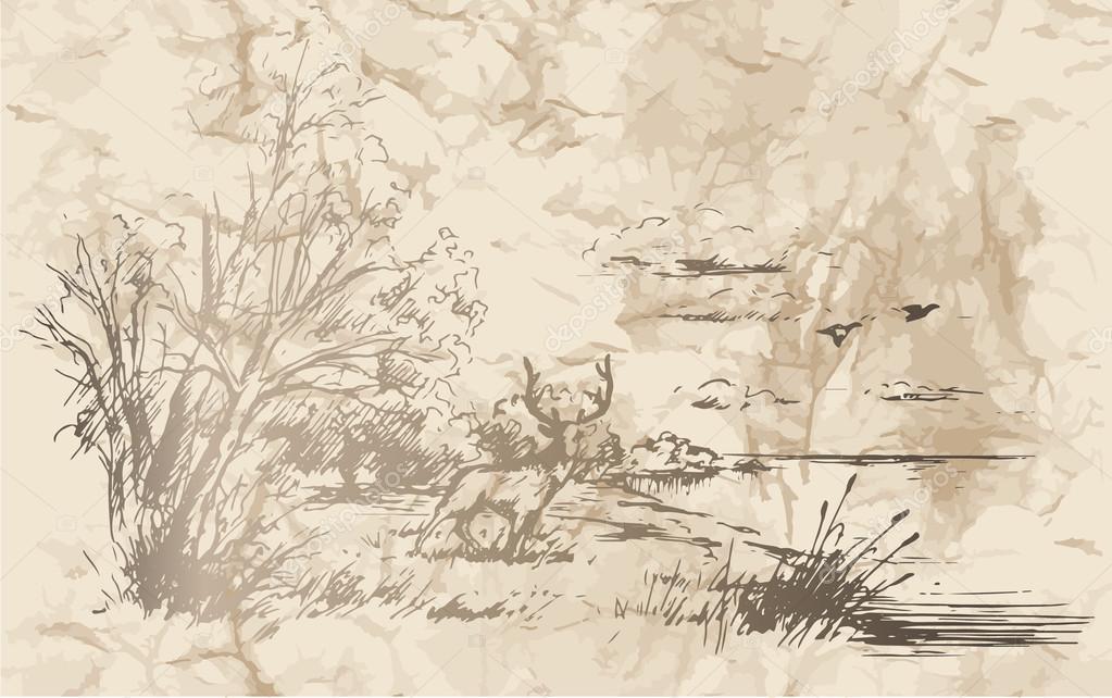 Hunting. Landscape. Moose.