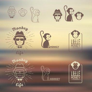 Vector illustration. Monkey logos set. The