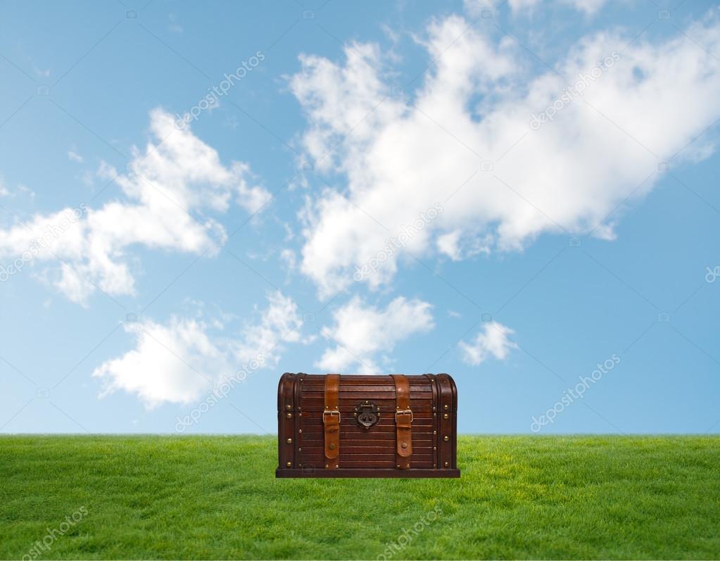 chest on green grass