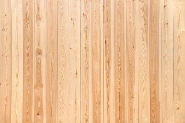 Pine wood texture stock vector