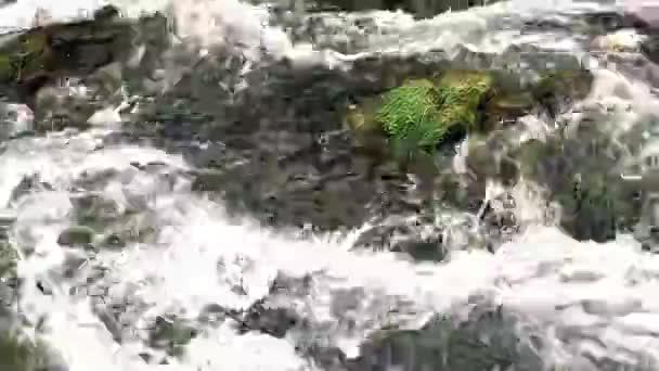 příroda, rock, kámen, voda, zpomalené, krajina, řeka, cestování, venku, prostředí, krásné, modré, abstraktní, léto, horská, tekoucí, potok, Les, proud, zblízka, rychlý, mech, mokrá, strom, pozadí, bílá, přírodní, jaro, vodopád, cr