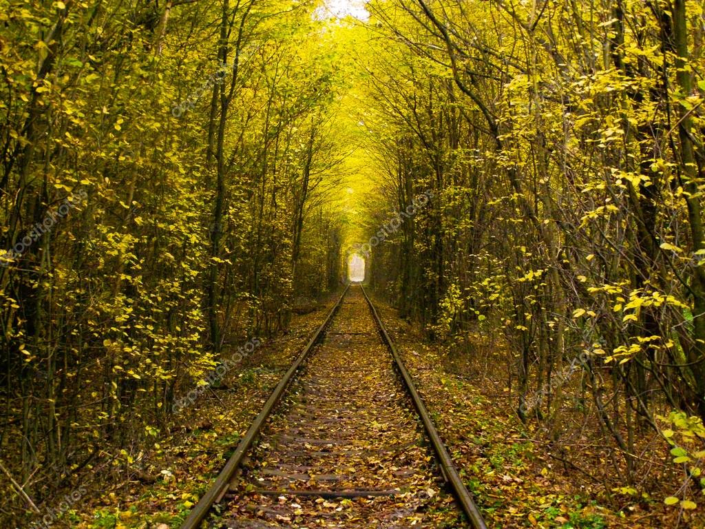 Yellow autumn and romantic railway.
