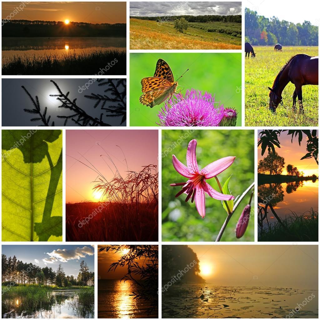 Collage sobre el tema del verano — Foto de stock © Starover64 #94026542
