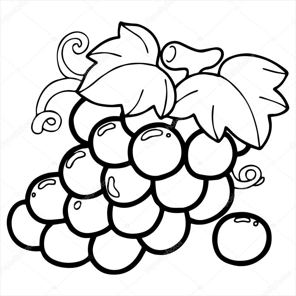 Grape cartoon illustration isolated on white — Stock ...