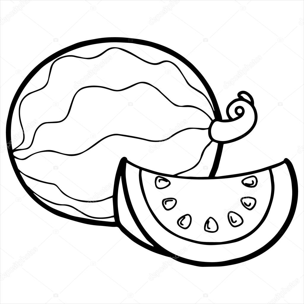 Watermelon cartoon illustration isolated on white — Stock Vector ... for Clipart Watermelon Black And White  104xkb