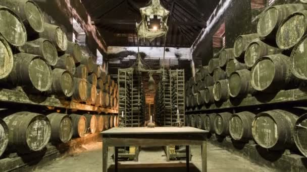 Barrels in the wine cellar with table and candle on it, Portugal timelapse