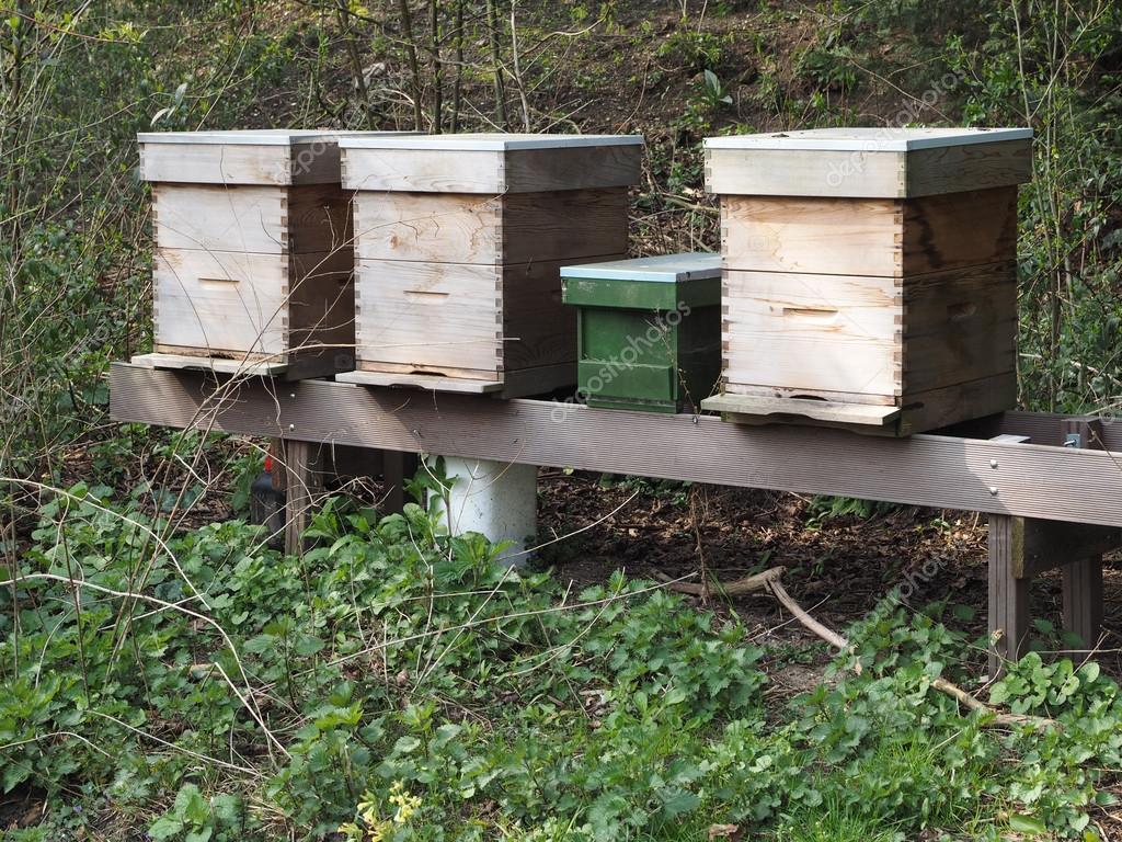 Three bee hives