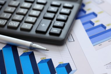 Financial statements (Business Graph or Stock Market Data)