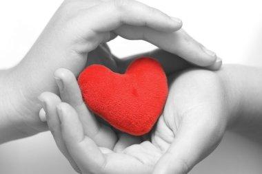 Heart in palms (BW)