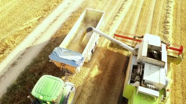 Harvester in harvest time. Navarre, Spain, Europe. Aerial view. 4K.