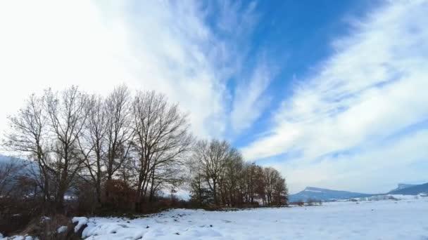 Zimní krajina se stromy a sněhem pokryl zemi a nebe s mraky v časovém horizontu. Navarre, Španělsko, Evropa.