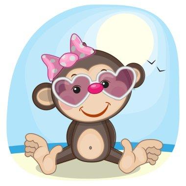 Monkey in sunglasses