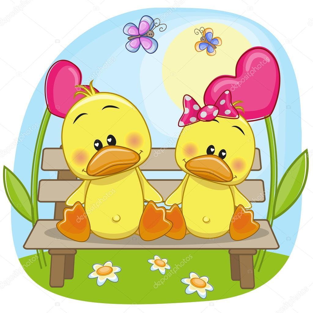 Lovers Ducks