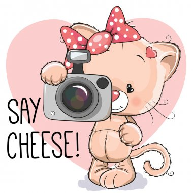 Cat with a camera