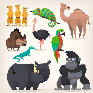 Animals fram african savanah