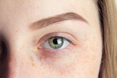 eye brow close up