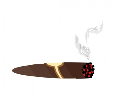 Cigar and smoke on a white background. An expensive Cuban cigar