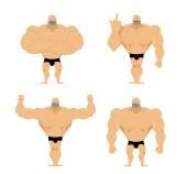 Fotografie Set von starken Männern. Gesunde Jungs mit den großen Muskeln. Bodybuilders i