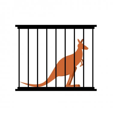 Kangaroo in cage. Animal in Zoo behind bars. Australian wild ani